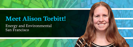 Alison Torbitt - Energy & Environmental - Nixon Peabody LLP